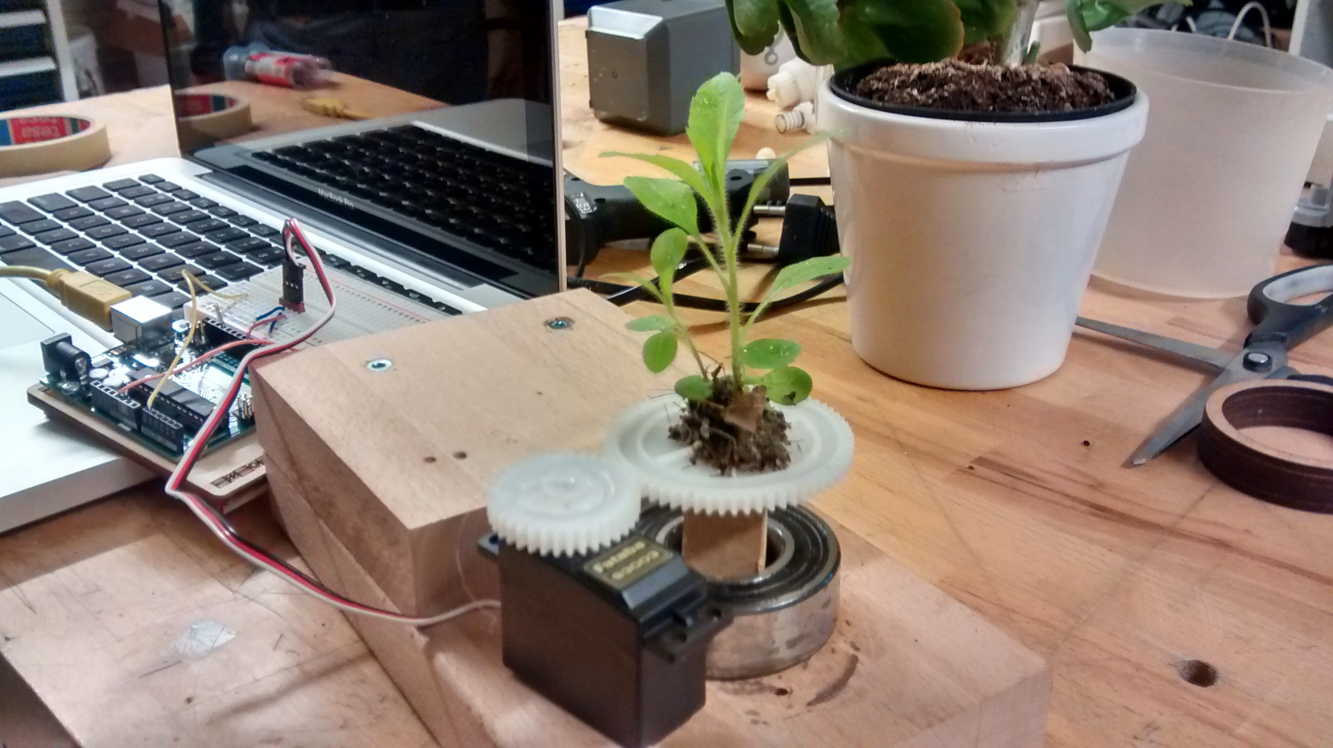 First Prototype
